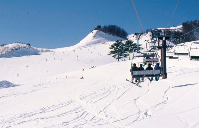 「ハチ高原スキー場」の画像検索結果